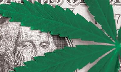 HRDive_CannabisPayroll
