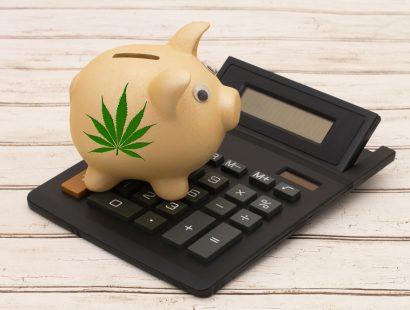 wurk-cannabis-payroll-regulation-410x310